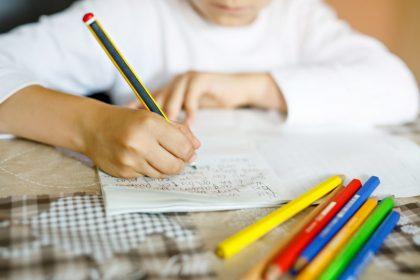Vlaams Belang wil absolute voorrangsregel voor Nederlandstalige kinderen