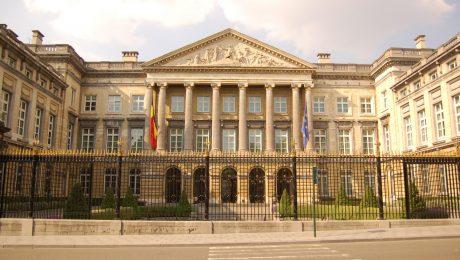 Vlaams Belang wil voor nieuwe verkiezingen volledige Grondwet herzien