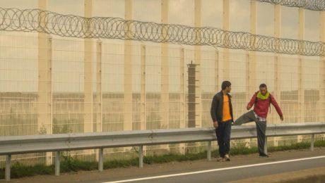 """Vlaams Belang: """"Oproep regularisatie illegalen is recuperatiepoging coronacrisis"""""""