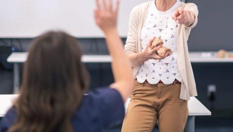 Vlaams Belang wil juni-vervangingen in secundair onderwijs verankeren