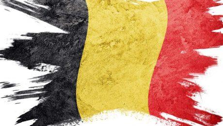 """Vlaams Belang roept N-VA en CD&V op om """"nooit mee te doen met herfederalisering"""""""