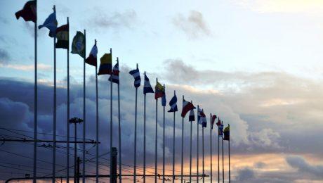Vlaams Belang hekelt Europese klimaatwet