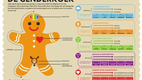 Vlaams Belang uit kritiek op gebruik leermiddel 'De Genderkoek' in Vlaams onderwijs
