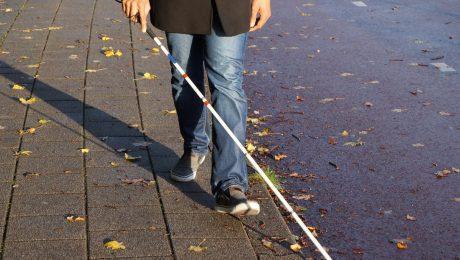 'Actieplan Handicap' van Lalieux mag niet bij woorden blijven