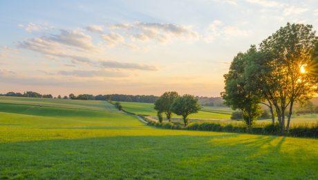 """Nationale parken en Landschapsparken: """"Luister ook naar de Landbouw"""""""