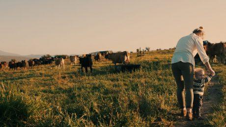 Wilmès hypocriet over landonteigeningen in Zuid-Afrika