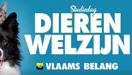 """Studiedag Dierenwelzijn: """"Maak eindelijk werk van Vlaamse Codex Dierenwelzijn"""""""